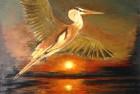 Bird & Sunset
